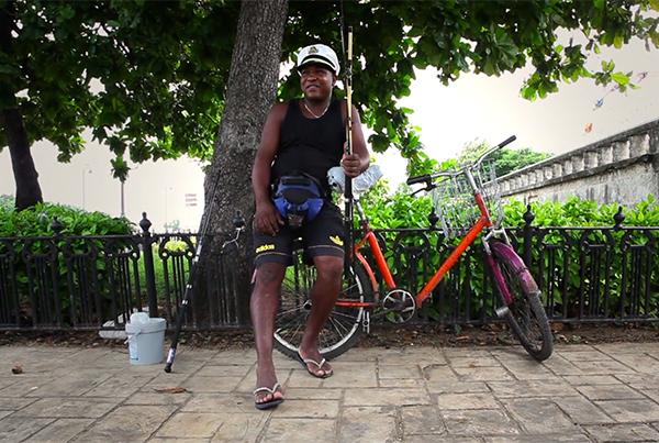 Kauri_Havana Bikes